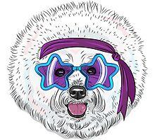 Star Disco dog Bichon Photographic Print