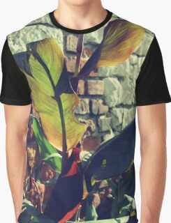 Canna indica #4 Graphic T-Shirt