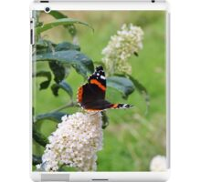 RED ADMIRAL BUTTERFLY ON WHITE BUDDLEIA  iPad Case/Skin