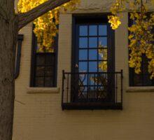 Yellow on Yellow - Golden Ginkgo Biloba and an Elegant Facade Sticker