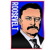 THEODORE ROOSEVELT-COLOR Poster