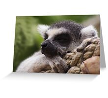 Shhhh I'm sleeping Greeting Card