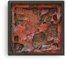 Mars Retrospective 3 Canvas Print
