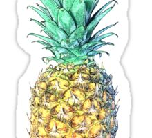 New pineapple 2016 Sticker