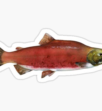 Sockeye Salmon Sticker