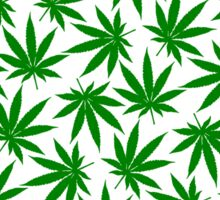 Colorado (CO) Weed Leaf Pattern Sticker