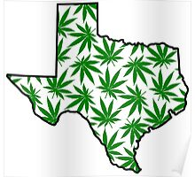 Texas (TX) Weed Leaf Pattern Poster