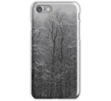 Snow - stormy day (2012) iPhone Case/Skin