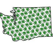 Washington (WA) Weed Leaf Pattern Photographic Print