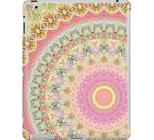Mandala 17 iPad Case/Skin