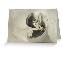 Vintage moth orchid Greeting Card