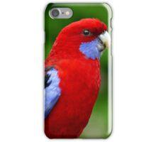 Rosella - NZ iPhone Case/Skin