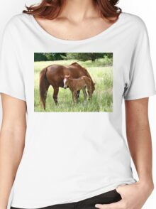 Mother And Foal - Christchurch Women's Relaxed Fit T-Shirt