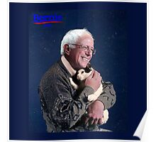 Bernie and the Cat Poster