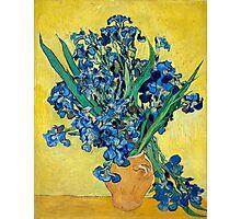 1890-Vincent van Gogh-Irises-73,5x92 Photographic Print