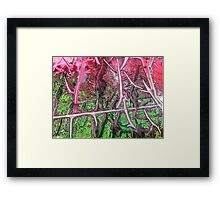 Abstract of Primeval Forest or Jungle Framed Print