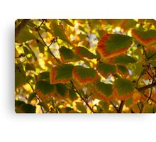 Slowly Changing Dimension - Hot Vibrant Leaf Edges Celebrating the Arrival of Autumn Canvas Print