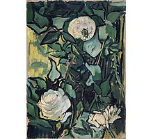 1890-Vincent van Gogh-Roses-24,5x33,5 Photographic Print