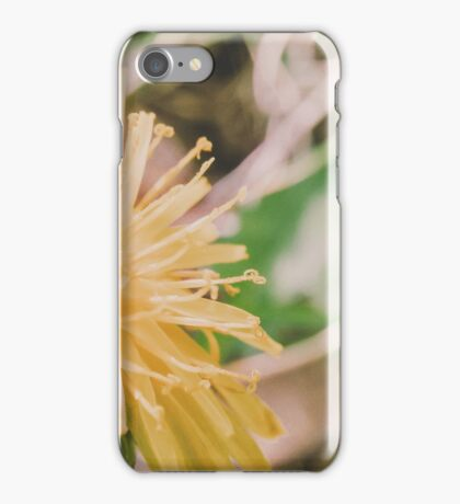 Citrus Burst iPhone Case/Skin