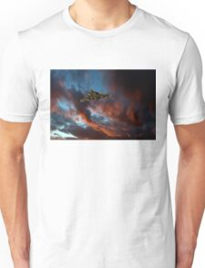 Avro Vulcan sunset Unisex T-Shirt