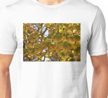 Rainbow Edges - Slowly Changing Leaves, Celebrating the Arrival of Autumn Unisex T-Shirt