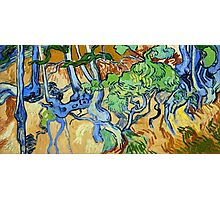 1890-Vincent van Gogh-Tree-roots-50x100 Photographic Print