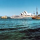 Sydney Harbour Panorama by George Petrovsky