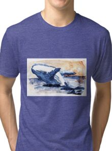 Gost of the sea Tri-blend T-Shirt
