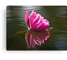 Reflection of Pink Canvas Print