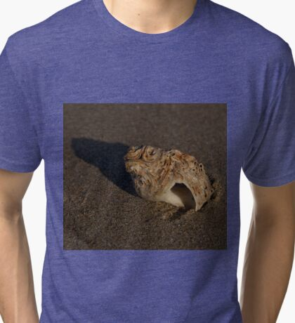 Weathered Whelk on Fahan Beach Tri-blend T-Shirt