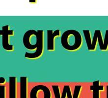 Grapes Do Not Grow - Bulgarian Proverb Sticker