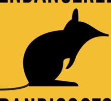 Endangered Bandicoots, Road Sign, Australia Sticker