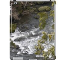 Gorge Water iPad Case/Skin