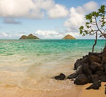 Lanikai Beach 1 - Oahu Hawaii by Brian Harig