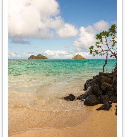 Lanikai Beach 1 - Oahu Hawaii Sticker