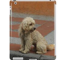 Stray Dog iPad Case/Skin