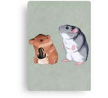 2 Hamster 1 Seed Canvas Print