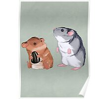 2 Hamster 1 Seed Poster