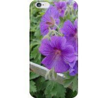 Wild Geraniums iPhone Case/Skin