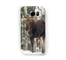 Bull moose in winter Samsung Galaxy Case/Skin