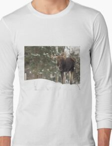Bull moose in winter Long Sleeve T-Shirt