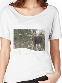 Bull moose in winter Women's Relaxed Fit T-Shirt