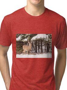 Deer in the snow woods Tri-blend T-Shirt