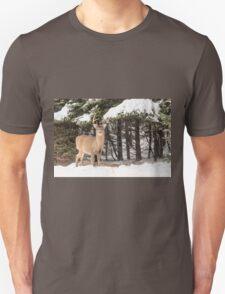 Deer in the snow woods T-Shirt