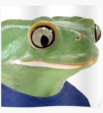 realistic pepe Poster