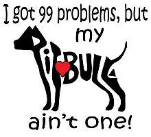 Pitbull Problems Photographic Print