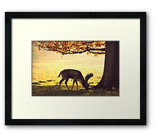 Petworth Park - Stag Do Framed Print