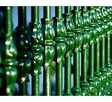 Green Gate Photographic Print