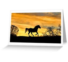 Running Horse in the Sunset Greeting Card