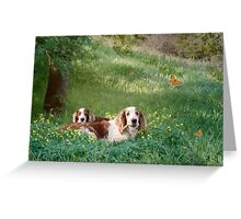 Welshie relaxation time Greeting Card